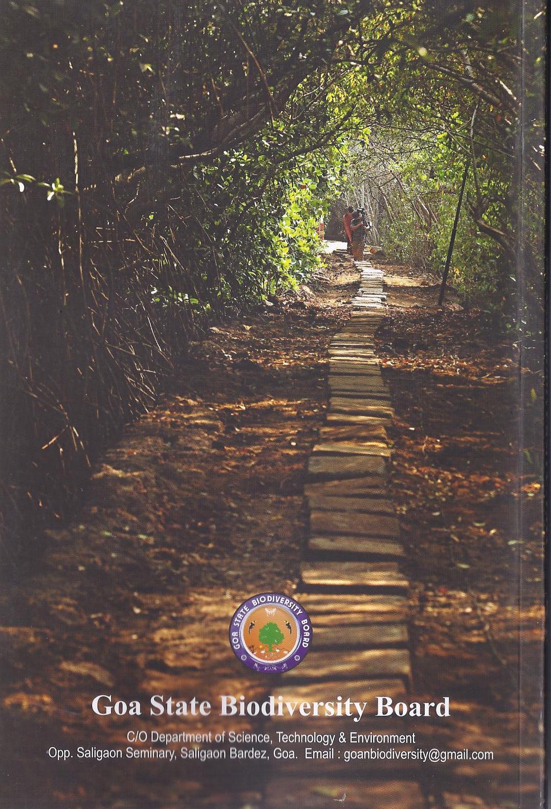 Island book back cover